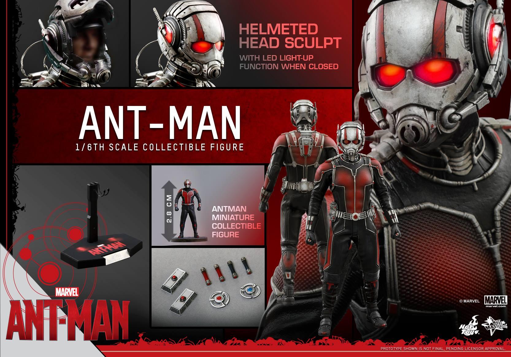 HOT TOYS - Ant-Man - Ant-Man 409391117