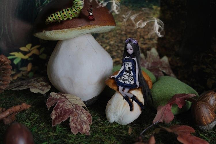 Nymeria (Sixtine Dark Tales Dolls) nouveau make-up p8 410984Alyssiaetchenillechampimousse3
