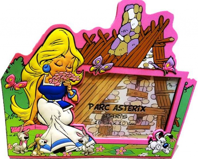 Mes dernières acquisitions Astérix - Page 5 422559cadremagnetiquefalbala