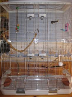 Ma cage (finalement ^^) 423120cage002