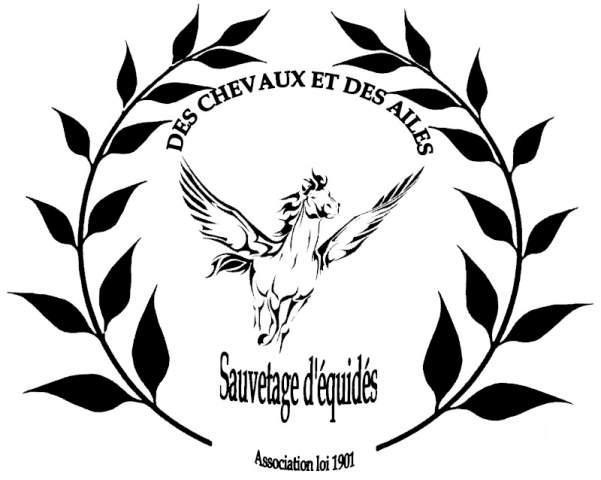 DES CHEVAUX ET DES AILES - Sauvetage d'équidés 423252logo_Annonces