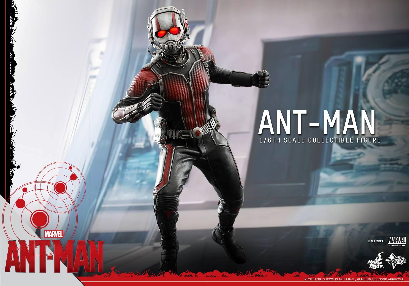 HOT TOYS - Ant-Man - Ant-Man 423486113