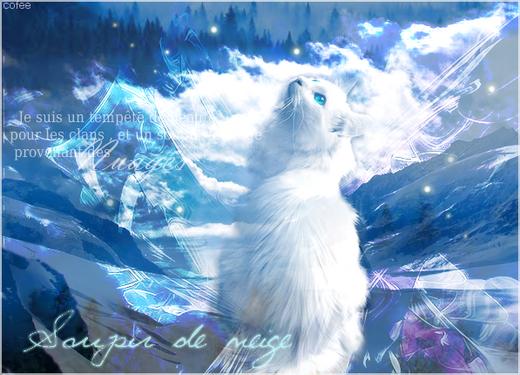 Une Aube pour la forêt, une prophétie pour les étoiles... 424640SoupirdeNeige