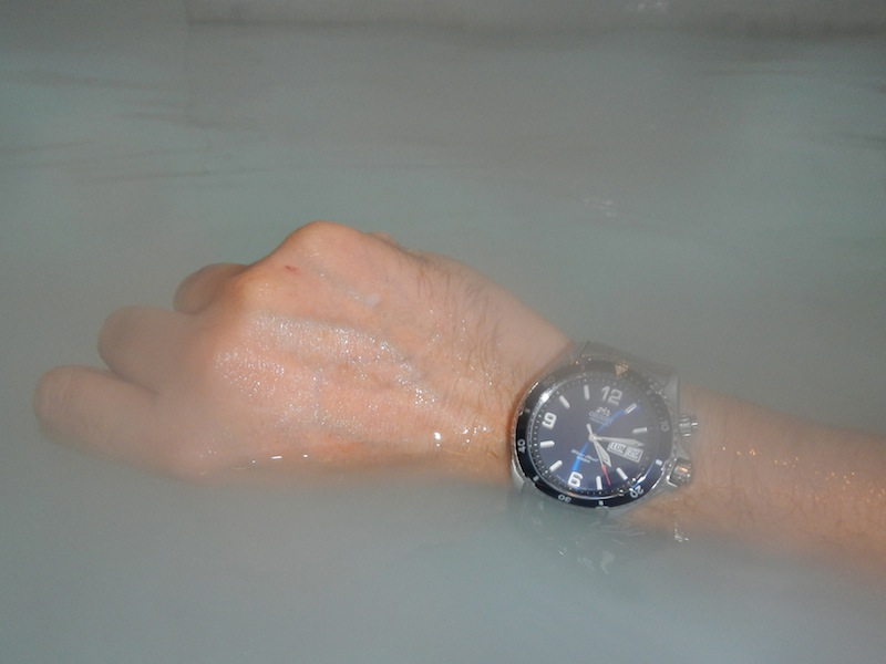 Orient Blue Mako en terre de glace 424672DSCN0651