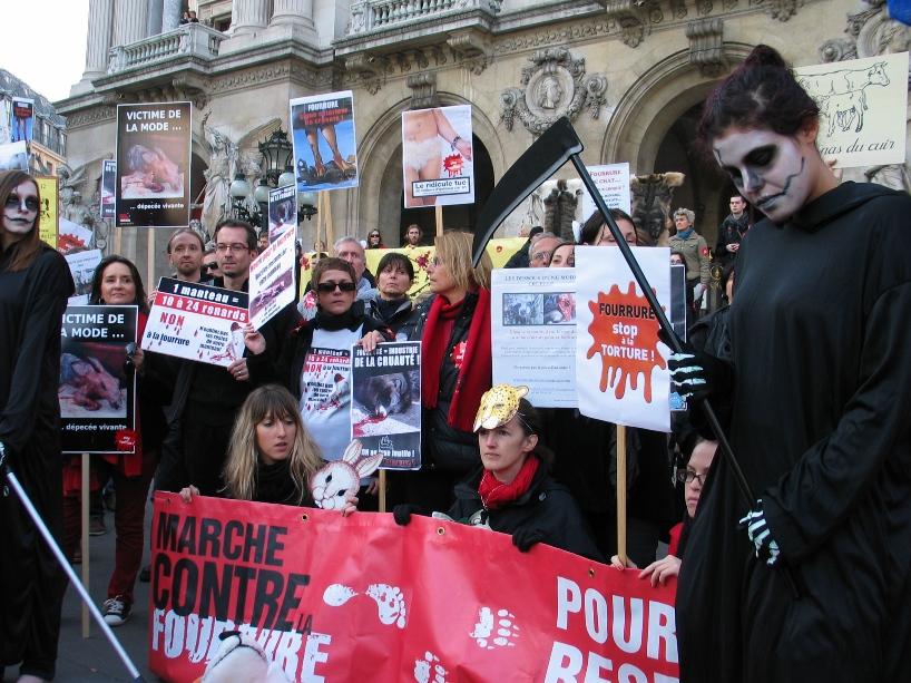 07 - Marche contre la fourrure - Paris 19 novembre 2011. 433561IMG6643