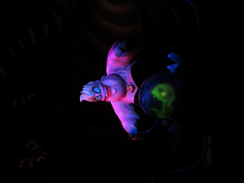 Walt Disney World + Universal Studios + Sea World + Busch Gardens Summer 2014 - Page 2 434161IMG0455