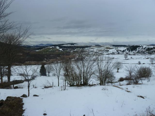 Bonnets Givrés : une belle hivernale rustique et joviale 436871P1340954