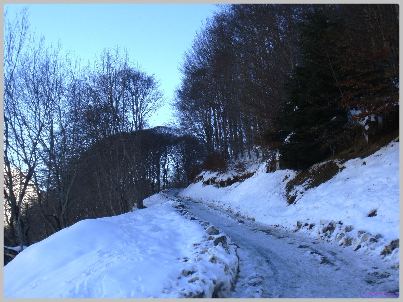 Une semaine à la Neige dans les Htes Pyrénées - Page 2 439169DSC011897