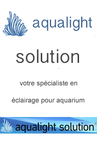 aqualight-solution