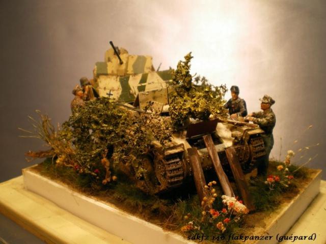 sd.kfz 140 flakpanzer (gépard) maquette Tristar 1/35 - Page 3 445623IMGP3246