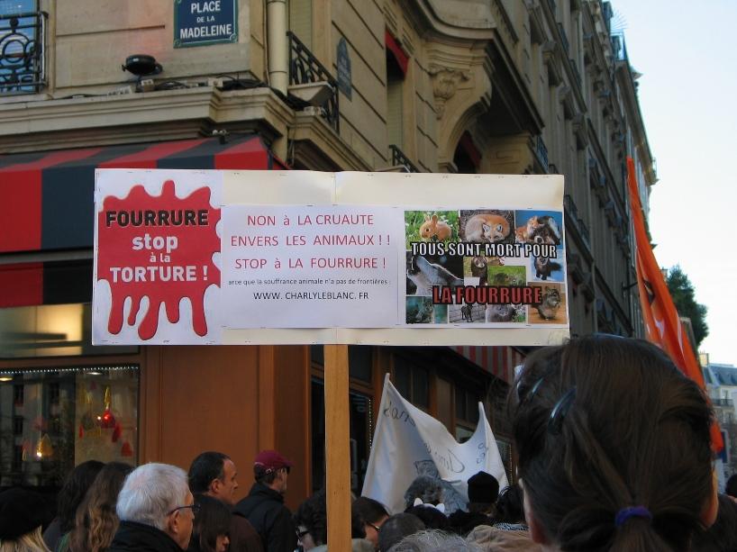 07 - Marche contre la fourrure - Paris 19 novembre 2011. 445653IMG6494