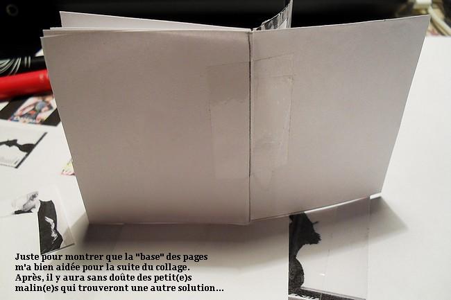 Le Bric à Brac de Chloé. Mini tuto p.3 447523SDC15396