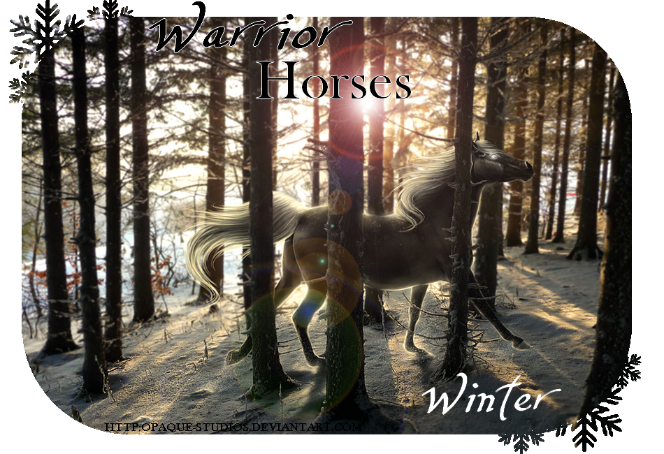 Warrior Horses