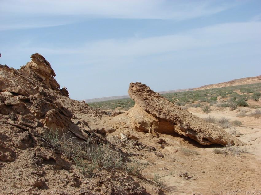 retour maroc 2012 - Page 2 449787045