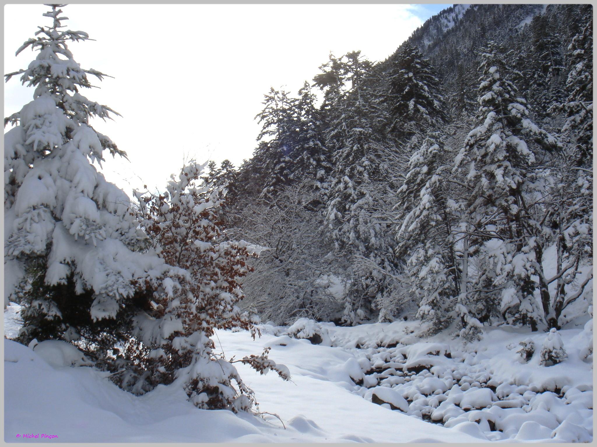 Une semaine à la Neige dans les Htes Pyrénées - Page 2 458494DSC00304