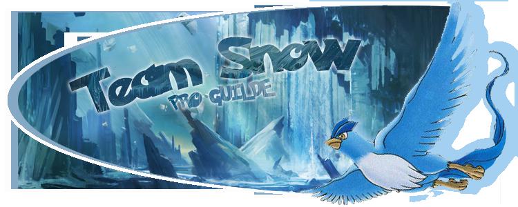 Bienvenue chez la Team Snow