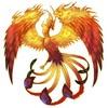 Prédéfinis n°1 : Merida Lazaryu 460836phoenixmerida
