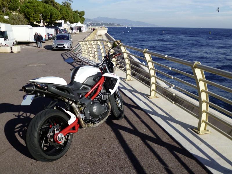 TnT 899 (2011) Red & White 463753P1020207LR