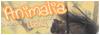 New Pets - Portail 465909animalia