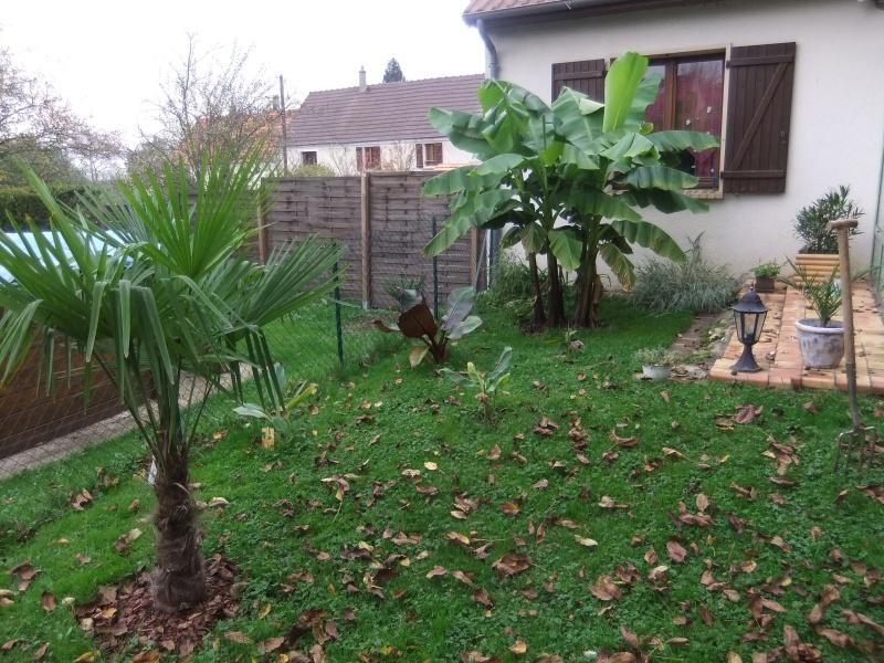 (77) Mon jardin dans la brie.  466398DSCF5697