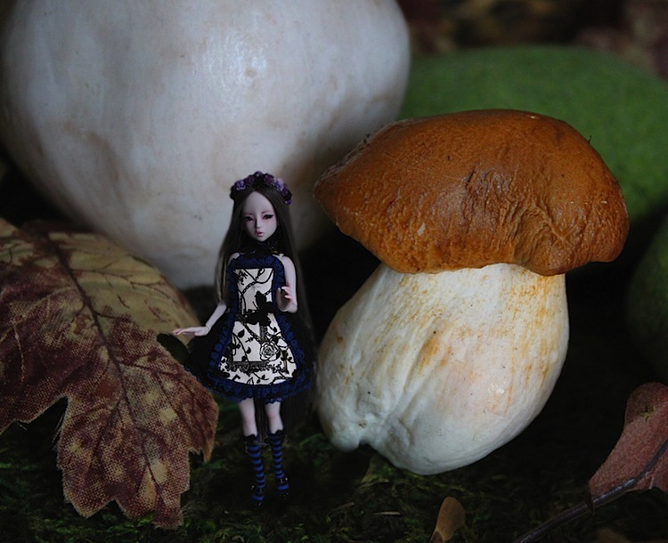 Nymeria (Sixtine Dark Tales Dolls) nouveau make-up p8 472947Alyssiartricie3
