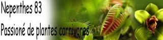 Recherche dons de plantes carnivores tempérés 47410147pc