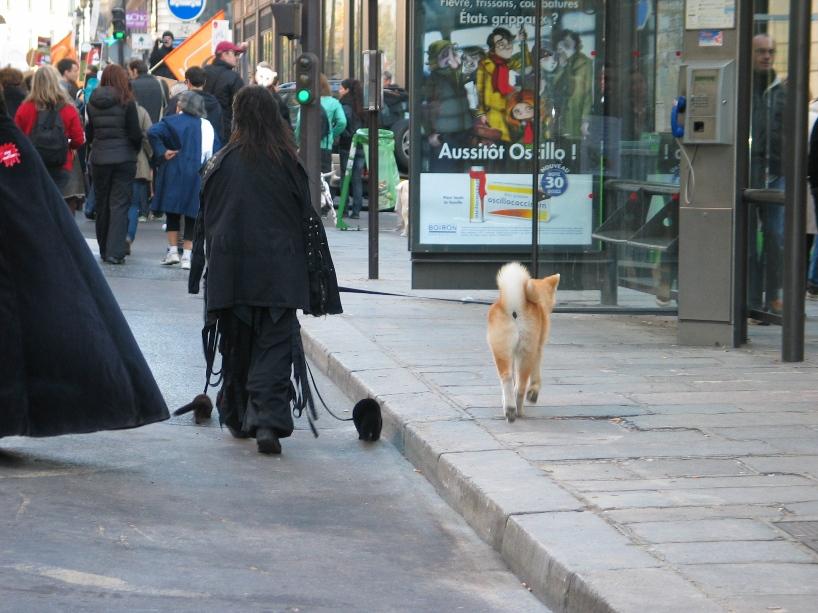 07 - Marche contre la fourrure - Paris 19 novembre 2011. 476140IMG6580