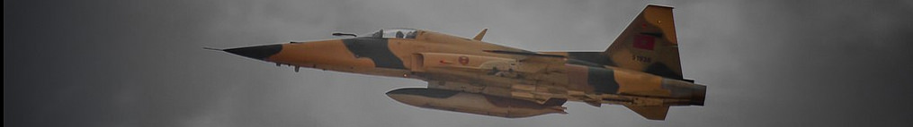 The Moroccan F-16V Viper / Block 72 program - Page 9 477237Sanstitre
