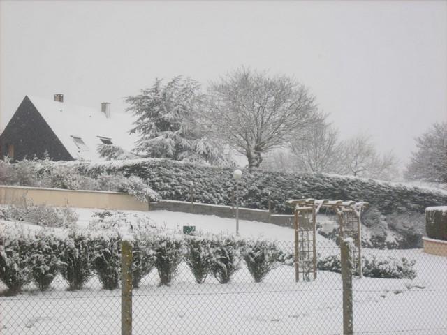 Mercredi 06 janvier 2010 - (Neige à Pont Farcy - 7 à 10 cm) 480710Jan06330