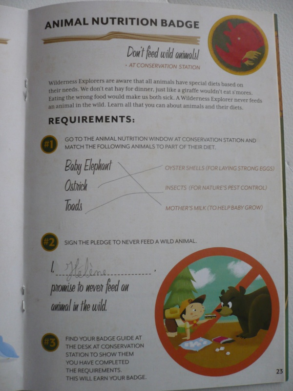 [18-31 octobre 2014] Voyage de noces à Walt Disney World et à Universal - Page 12 481196P1100506