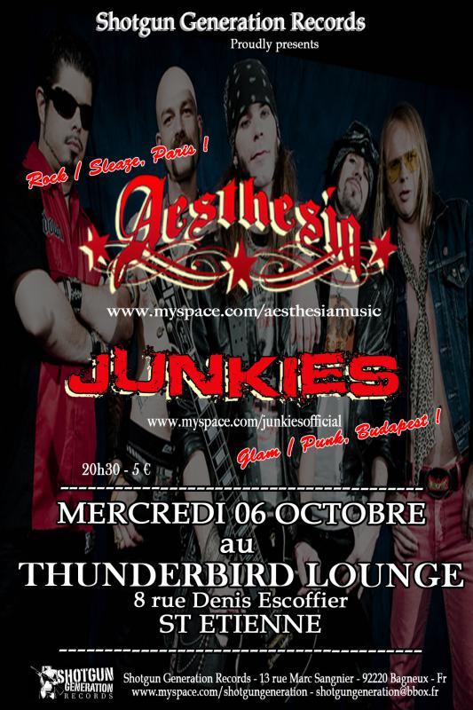 Aesthesia en concert 488393AESTHESIA_JUNKIES