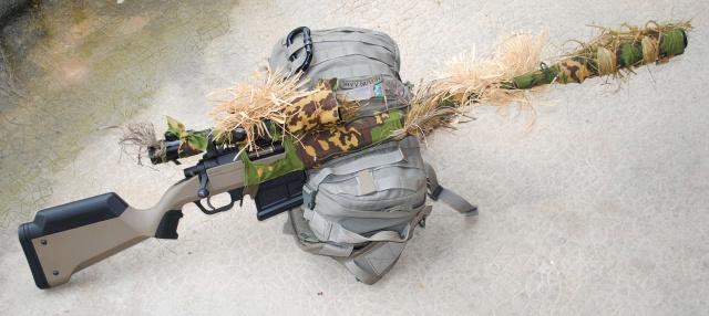 Sniper : Ares amoeba Striker ! 488822DSC0454