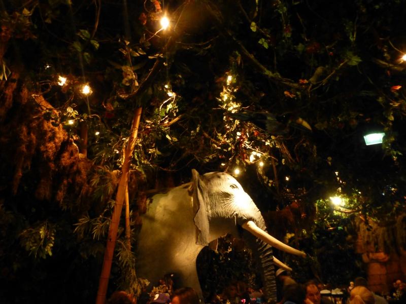 Trip Report d'une journée drôlement effrayante le 8 octobre pour Halloween et TR d'un séjour au Cheyenne les 19 et 20 novembre pour Noël :) - Page 4 489394P1250534