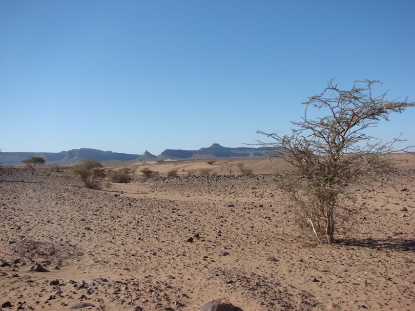 Le Grand Sud du Maroc - II 491621125