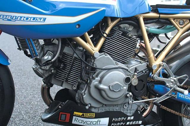 Ducat' DeLight 494893DucatDelight4