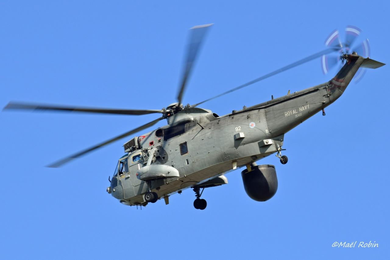 NATO Tiger Meet 2017 Landivisiau 495785landirns033