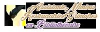 Assistante chez Nimbus - Restauratrice de Grimoires Anciens