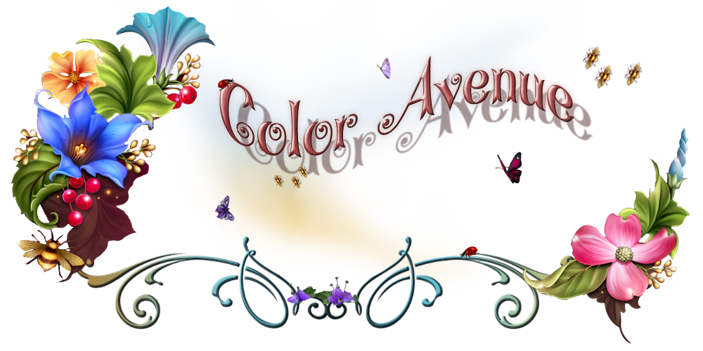 Color'Avenue Graphisme©