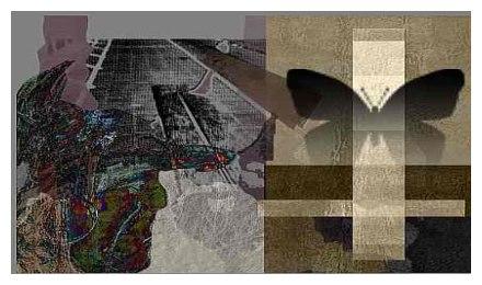 la vision du monde de jonquille 502392hrJQ7FHtF4