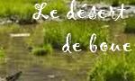 Le Désert de Boue