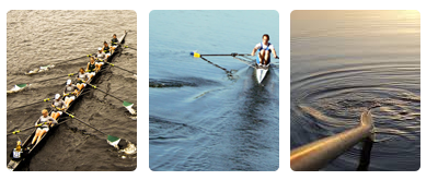 Clubs de Sport 506776rowing