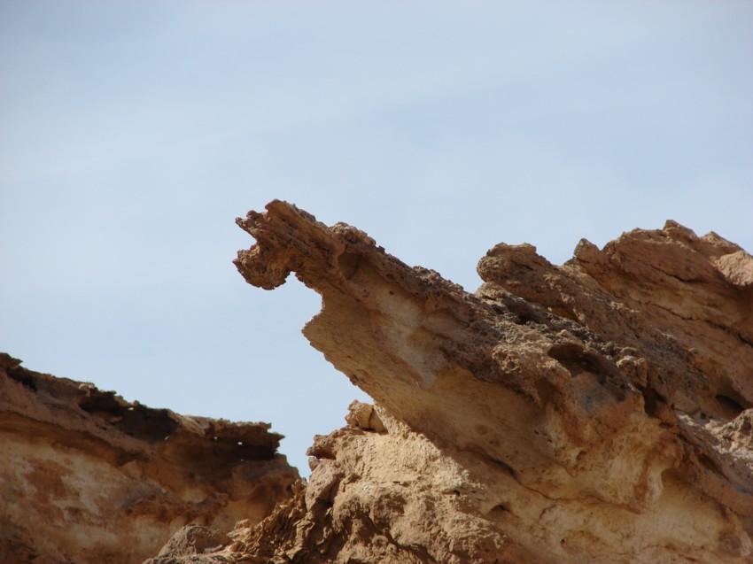 retour maroc 2012 - Page 2 507526047