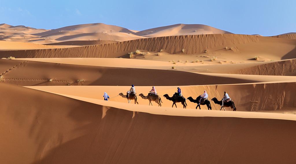 Mes ballades dans le désert de l'Erg Chebbi. 507967DSC2718