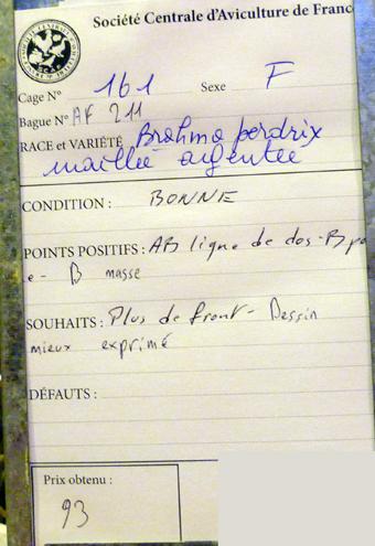 salon de l'Aviculture de Paris du 22/02/2014 au 02/03/214 - Page 4 508675P1130501