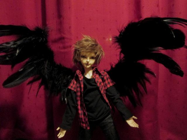 Petites ailes 513182IMG1773