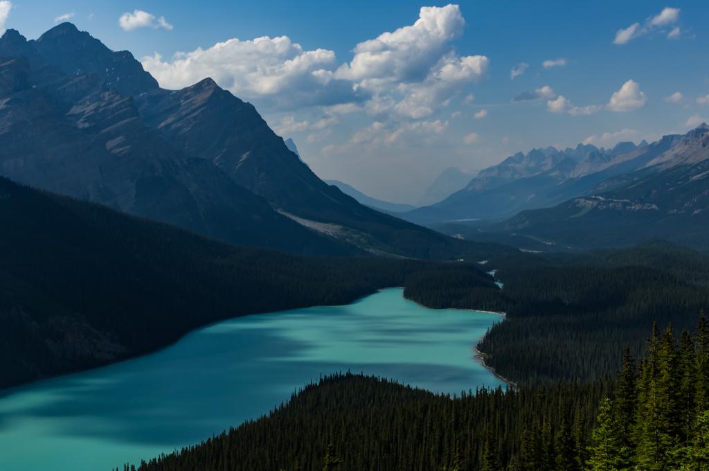 Alberta (1) 513208IGP3011