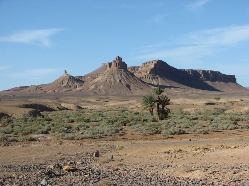 retour maroc 2012 - Page 2 515610134