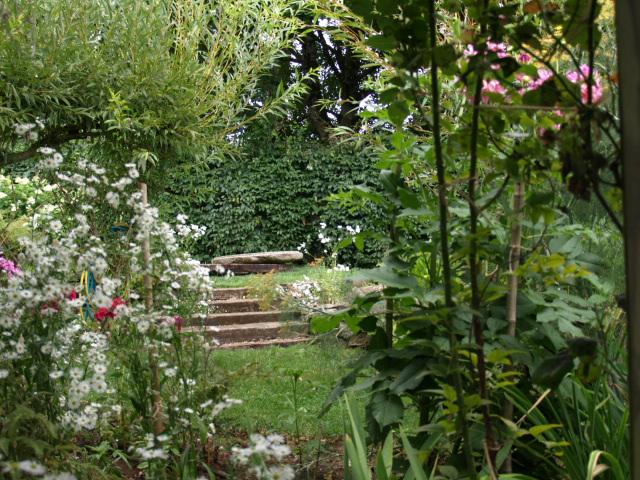 le jardin des plantes du mourot 517405P7202037