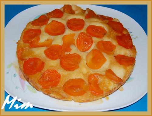 Gâteau moelleux aux abricots surgelés + photo 518046Gteauabricotssurgel001