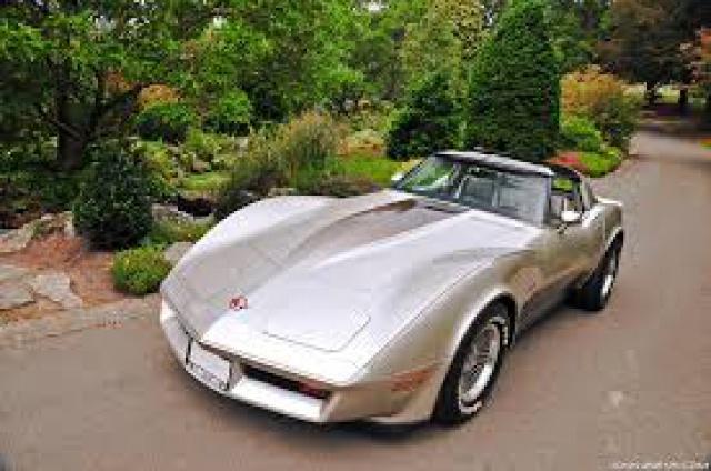 chevrolet corvette 1982 edition collector monogram au 1/8 - Page 2 518363corvettei0